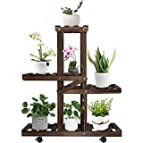 Augosta Tiered Plant Stand, Plant Stands for Multiple Plants, Plant Shelf...