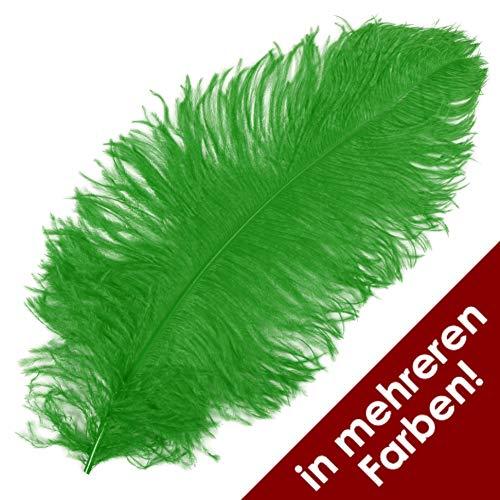 Thetru Straußen-Feder in grün | Hut-Feder ca. 50-60 cm | Federn zu Karneval und Fasching (grün)