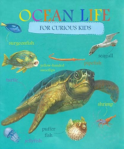Ocean Life Book For Curious Kids: 50 Funny Ocean Animals Facts,Big Pictures,Activities (Books For Curios Kids 2)