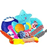 Top 10 Dog Toy Gift Sets