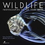 Wildlife Photographer of the Year 2019 - Les plus belles photos de nature