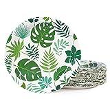 Hawaiian Luau Paper Party Plates, 9inch-50pcs, Jungle Party Plates for Birthday Party, Beach Party
