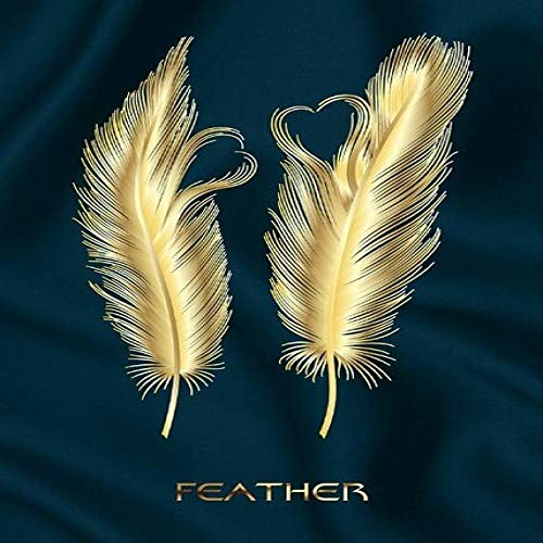 Canvas Paintings On The Wall Posters And Prints Feathers Wall Pictures For Living Romm Wall Decoration A 40x60cm