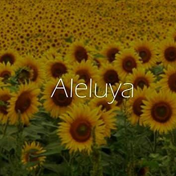 Aleluya (Cover)