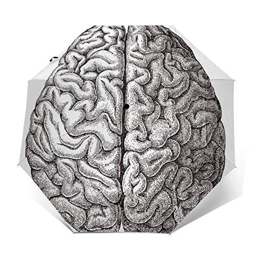 Paraguas Plegable Automático Impermeable Cerebro Humano médico, Paraguas De Viaje Compacto a Prueba De Viento, Folding Umbrella, Dosel Reforzado, Mango Ergonómico