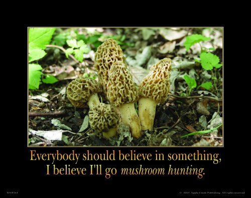 Morel Mushroom Hunting Motivational Poster Art Print 11x14 Fresh Dried Spores Wall Decor Pictures