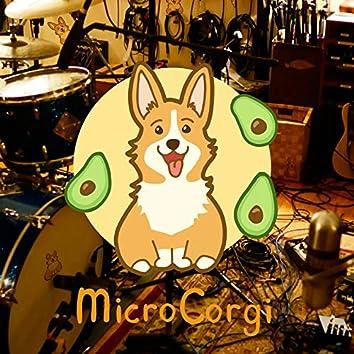 MicroCorgi - EP