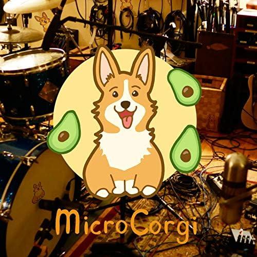 MicroCorgi feat. Yuto Kanazawa, Andrew McGowan & Ilya Dynov
