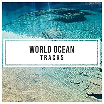 """"""" Soft World Ocean Tracks """""""