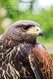 Falkner Tagebuch: Tageseintragungen, Notizen und Journal für den Falkner, die Falknerin, Natur- und Vogelfreunde. Dezent grau liniert. Wüstenbussard - Harris Hawk