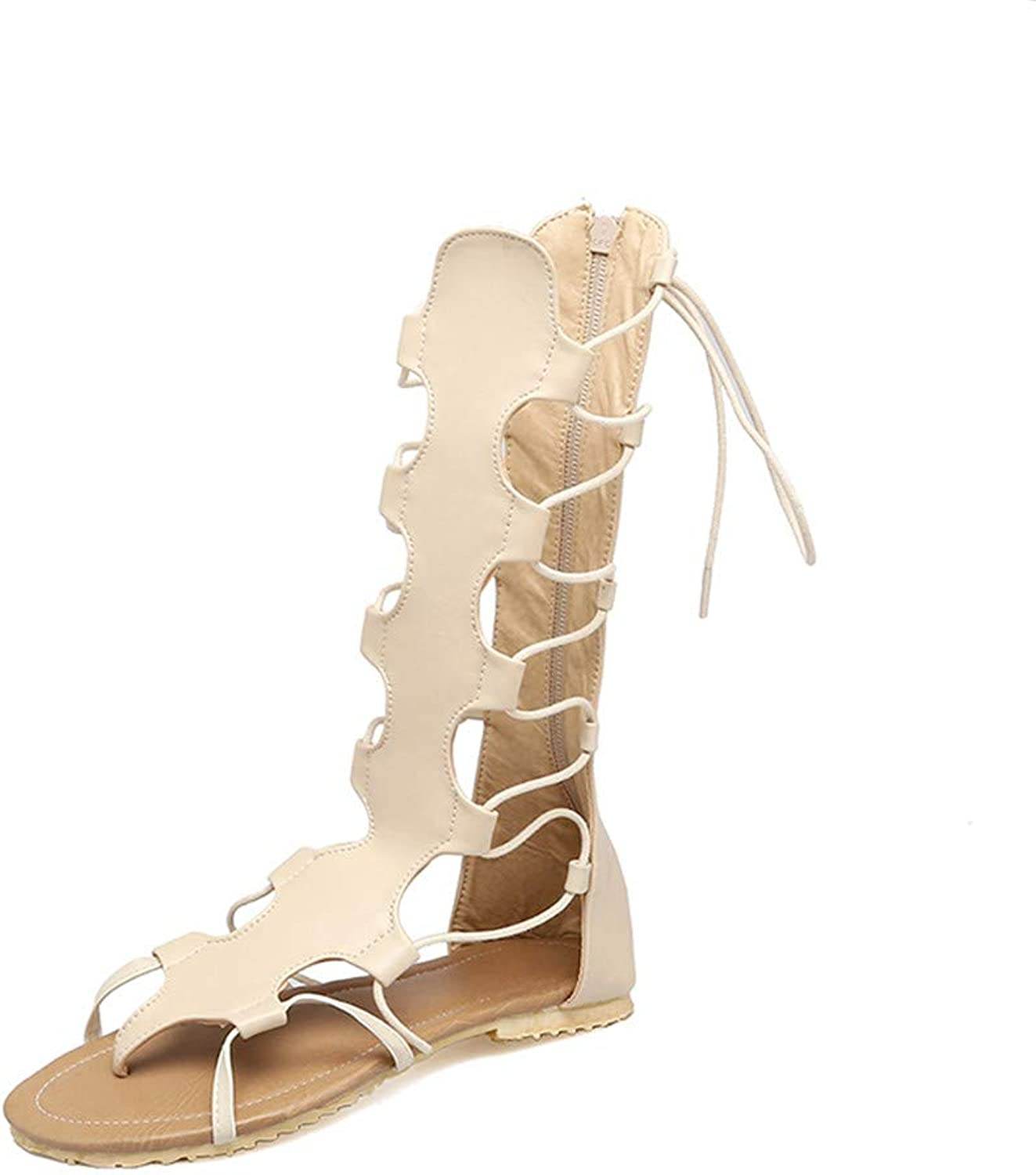 New Gladiator Sandals Women Cross-Tied shoes Fashion Cut-Outs Back Zip Knee high Summer Sandals