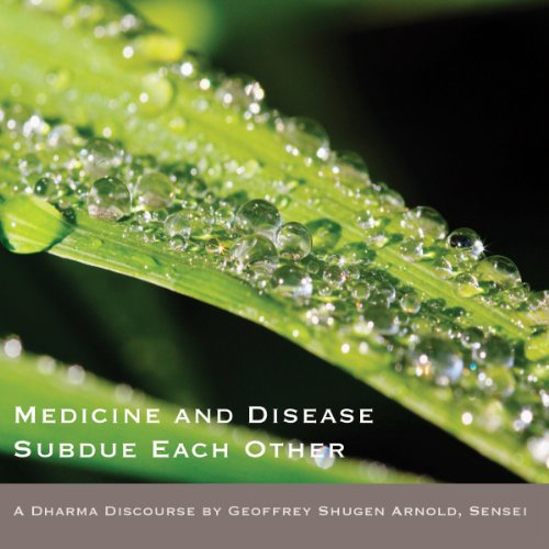 Medicine and Sickness Heal Each Other cover art