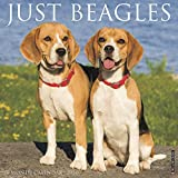 Willow Creek Press: Just Beagles 2020 Wall Calendar (Dog Bre