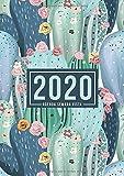 Agenda semana vista 2020: Del 1 de enero de 2020 al 31 de diciembre de 2020: Diario, organizador y planificador con vista semanal y mensual español: Arte de cactus en verdes 910-2