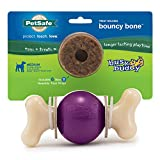 PetSafe Busy Buddy Bouncy Bone Dog Chew Toy - Medium