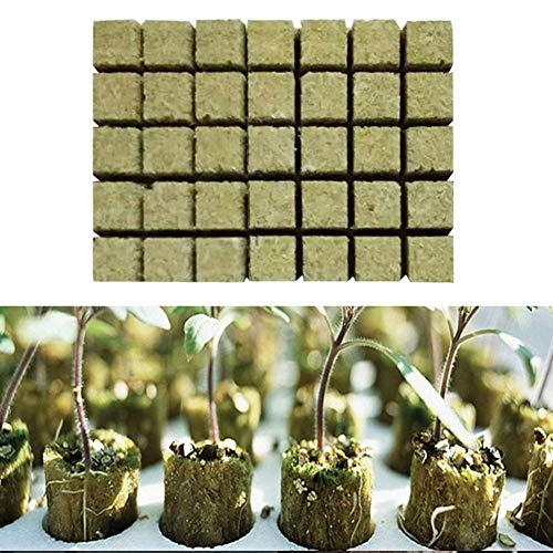Kitabetty Rockwool Starterstopfen, Grodan Rockwool Soilless Culture Substrate, Landwirtschaftliches Schneiden Sämling Block Hydroponic Grow Media Vermehrungspflanze Keimschalen, 36 × 36 × 40 MM