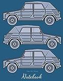 Type 181 Thing: Vintage vehicle appreciation  journal and repair workbook