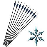 SHARROW 12pcs Flechas de Carbono 30 Pulgadas Spine 500 para Arco Compuesto Recurvo Flechas de Caza (Azul+ 12pcs Broadhead)