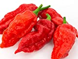 Ghost Pepper Seeds-...image