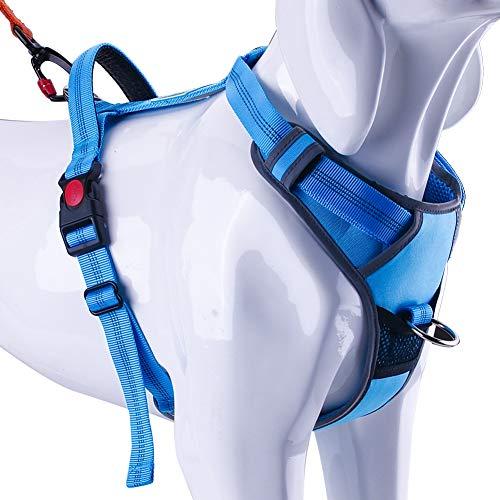 ThinkPet No Pull Harness Atmungsaktives Sportgeschirr - Reflektierende gepolsterte Hundesicherheitsweste mit oberem Griff, Rücken- / Frontclip für Easy Control L Hellblau