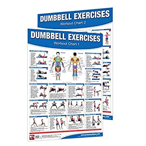 Productive Fitness Poster Series Advanced Functional Trainer Laminated