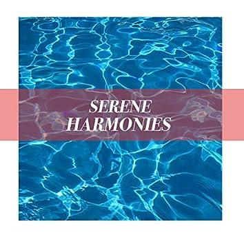 # 1 A 2019 Album: Serene Harmonies