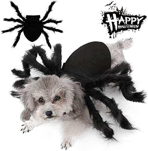 Easyme Disfraces de Halloween para mascota, Halloween mascota gato perro simulación de araña de felpa cosplay disfraces con hebilla ajustable para el cuello (mediano)