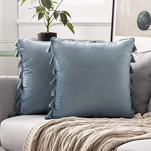 MIULEE Pack of 2 Velvet Soft Solid Decorative Throw Pillow Cover with Tassels Fringe Boho Accent Cushion Case for Couch Sofa Bed 18x18 Inch Light Blue.