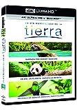 Un Día Maravilloso En La Tierra (4K UHD + BD) [Blu-ray]