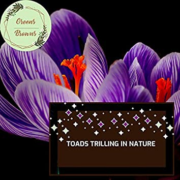 Toads Trilling in Nature