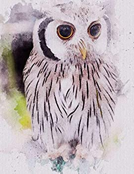 Barn Owl - Notebook 500 Pages  Watercolor Animal 500 Lined Pages 8.5 x 11 Wide Ruled Paper Notebook Journal | Daily diary Note taking Writing .. Cool Barn Owl Design  1000 total sheets