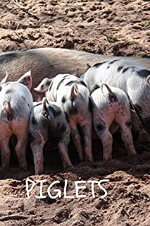 Piglets: Notebook with Animals for Kids, Notebook for Coloring Drawing and Writing ( Realistic Colors, 110 Pages, Unlined, 6 x 9)(Animal Glossy Notebook)