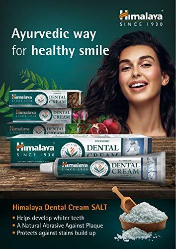 Himalaya Ayurvedic Dental Cream Pasta de dientes a base de hierbas - Sal, con sal natural para una sonrisa más luminosa… 6