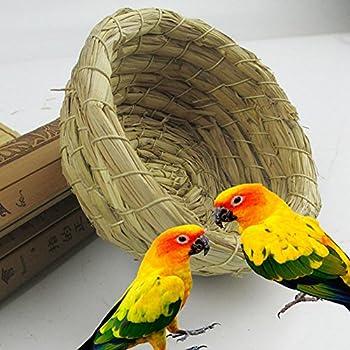 Kentop Nid d'oiseau de Paille Tissée Cages Maison de Lit Accessoires de Cage à Oiseaux pour Perroquet Pigeon 10.5 * 10.5 * 5cm