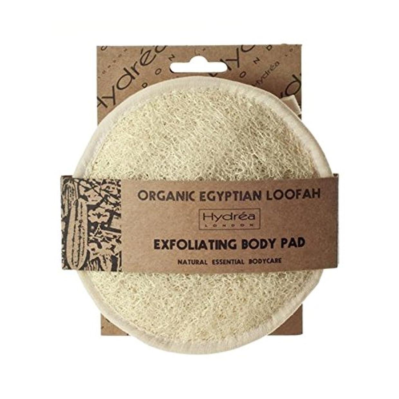 着陸ピグマリオン部ハイドレアロンドンオーガニックソフトエジプト綿ヘチマボディパッド x4 - Hydrea London Organic Soft Egyptian Cotton Loofah Body Pad (Pack of 4) [並行輸入品]