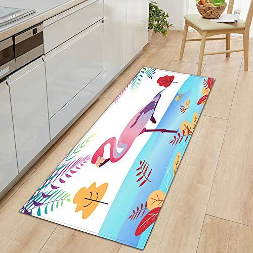 Zerbino per interni colorato fenicottero 80 cm x 120 cm lungo tappeto corridore corridoi cucina tappeti antiscivolo tappetino comfort tappetini multiuso per bagno o postazioni di lavoro