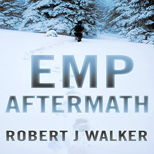 EMP Aftermath cover art