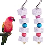 Parrot Beak Trim Calcium Stone Cage Toy, Chinchilla Grinding Teeth Lava Block, Mineral Rock Chewing Toys Flower Shape with Bell for Conure, Budgies,Parakeet,Hamster,Rabbit 2-Pcs