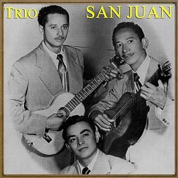 Vintage Puerto Rico No. 16 - LP: Mi Tesoro