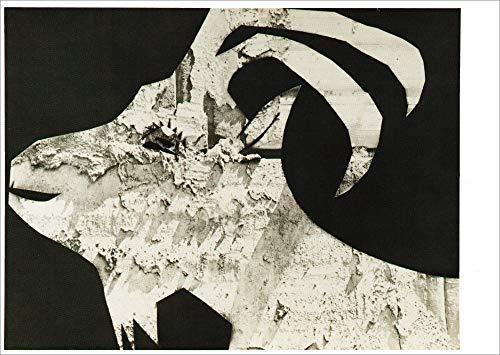 5er-Packung: Kunstkarte Pablo Picasso
