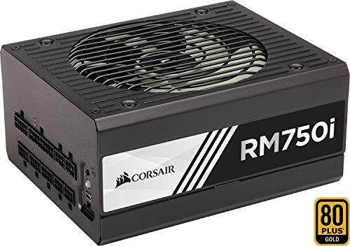 Fuente de alimentación para PC Corsair RM750i (Modular completo, 80 PLUS Oro, 750 W, UE)