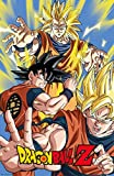 Theissen Dragon Ball Z, Goku, Paper, Multi-Coloured - Póster enmarcado mate (28 x 43 cm) *IT-00266