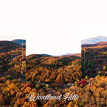 Woodland Hills – 15 Forest Sound Recordings
