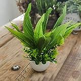 2018 Bouquet de fleurs artificielles décoratives fleurs artificielles en soie et plastique pour la maison ou le jardin ou la fête de mariage Taille L 15 cm