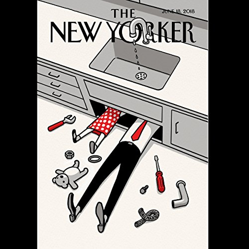 The New Yorker, June 13th 2018 (Rebecca Mead, Adam Entous, Evan Osnos) audiobook cover art
