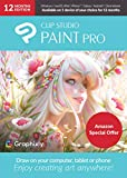 CLIP STUDIO PAINT PRO with Bonus Brushes   12 Months Edition   1 Device   PC, macOS, iPad, iPhone, Galaxy, Android, Chromebook [Keycard]