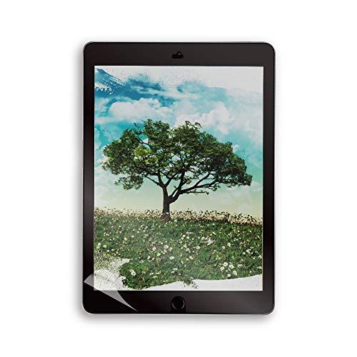 オウルテック iPad 10.2インチ(第7世代)対応 ペーパーライクフィルム 紙のような描き心地のフィルム クリア...