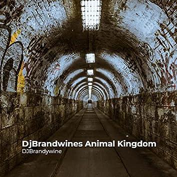 DjBrandwines Animal Kingdom