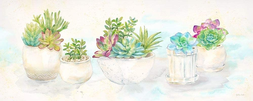 Posterazzi Collection Sweet Succulents Panel Print by 55% OFF Cyn Poster Ranking TOP14