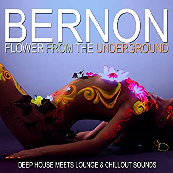 Flower from the Underground (Deep House Meets Lounge & Chillout Sounds)